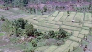 Lombok010