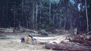 It's a long wait for the logging truck that will give us a lift.