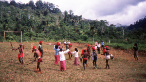 The villagers perform a traditional dance.