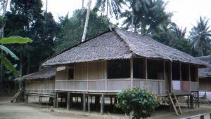 A Wasa house.