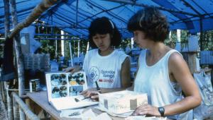 British entomologist Caroline with Japanese venturer Miwa identifying butterflies at base camp A.